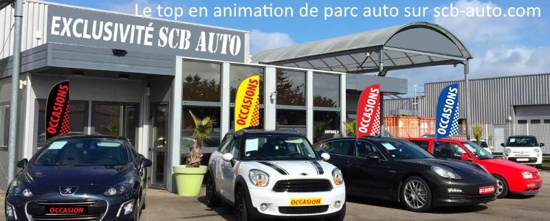Animation de parc Auto les drapeaux Occasion sur vitre