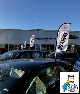 Drapeaux sur vitre Occasions Renault